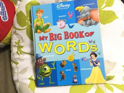 DWEのBigBookWords